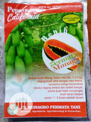 Pawpaw / Papaya Seeds | Feeds, Supplements & Seeds for sale in Abuja (FCT) State, Central Business Dis