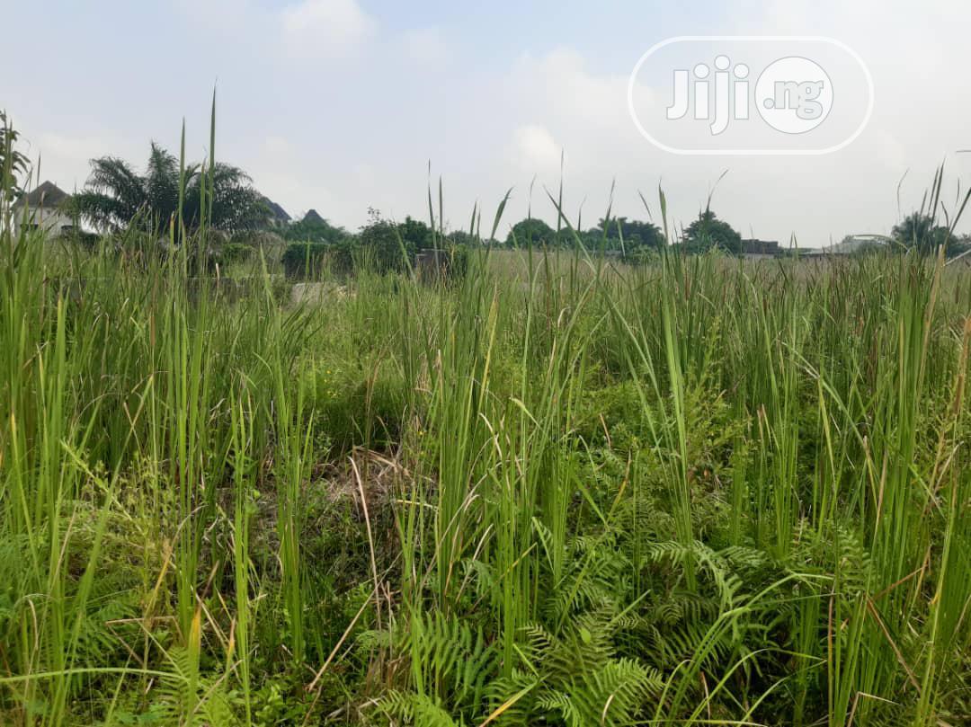 Residential Land In Ajah Beside LBS Olokonla Distress Sale   Land & Plots For Sale for sale in Ogombo, Ajah, Nigeria