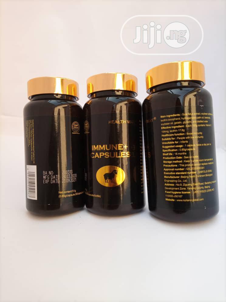 Archive: Immune Plus Capsule Contains Antioxidant Properties