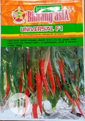 Red Hot Pepper Seeds.   Feeds, Supplements & Seeds for sale in Abuja (FCT) State, Central Business Dis
