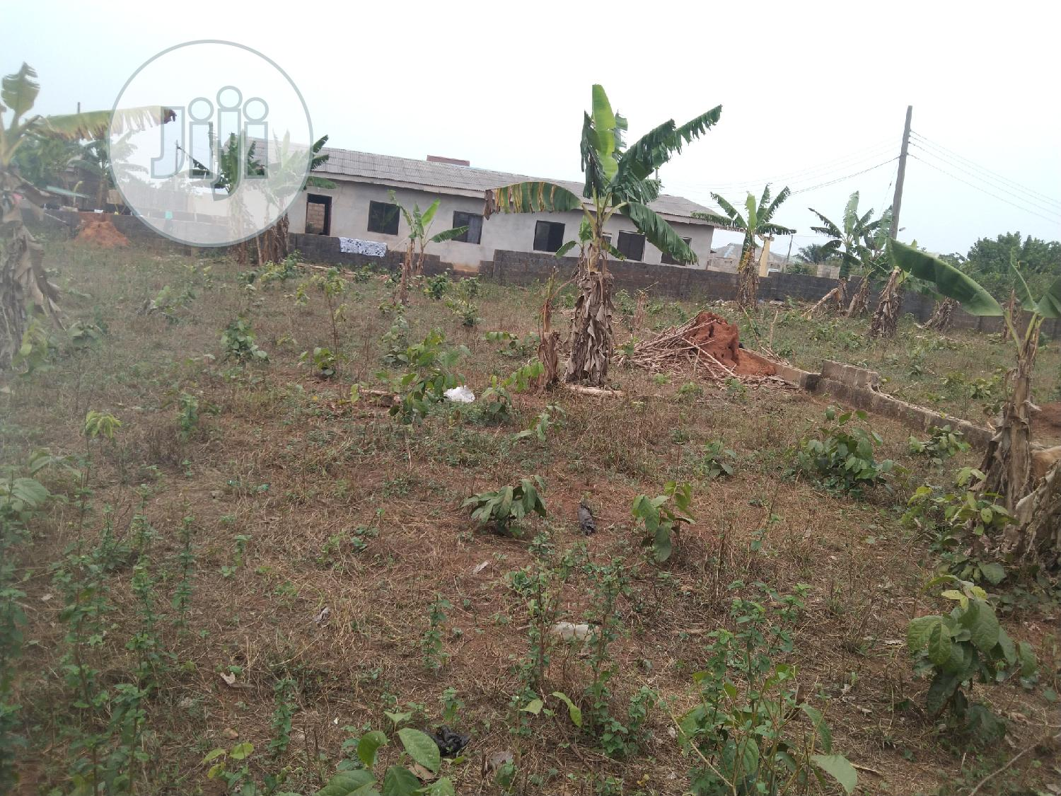 Half Plot in a Decent and Cool Area Fenced Gate at Itele | Land & Plots For Sale for sale in Ayobo, Ipaja, Nigeria