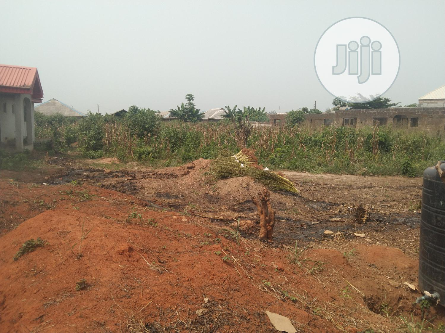 Full Plot of Land Fenced Gate at Itele | Land & Plots For Sale for sale in Ayobo, Ipaja, Nigeria
