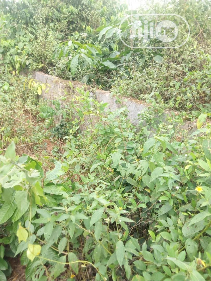 100ft by 200ft Plot of Land for Rent Near BIU. | Land & Plots for Rent for sale in Benin City, Edo State, Nigeria
