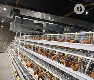 Automatic a Type Poultry Cage Battery Cages Chicken Cages | Farm Machinery & Equipment for sale in Abia State, Obi Ngwa