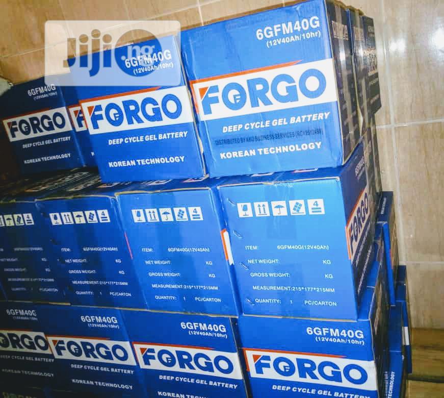40ah/ 12v Forgo Battery