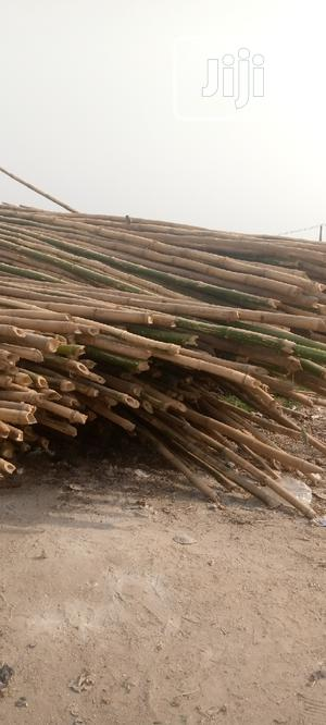 Fresh and Long Bamboo | Building Materials for sale in Lagos State, Yaba