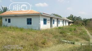 Palm Plantation Farmland For Sale   Commercial Property For Sale for sale in Oyo State, Lagelu