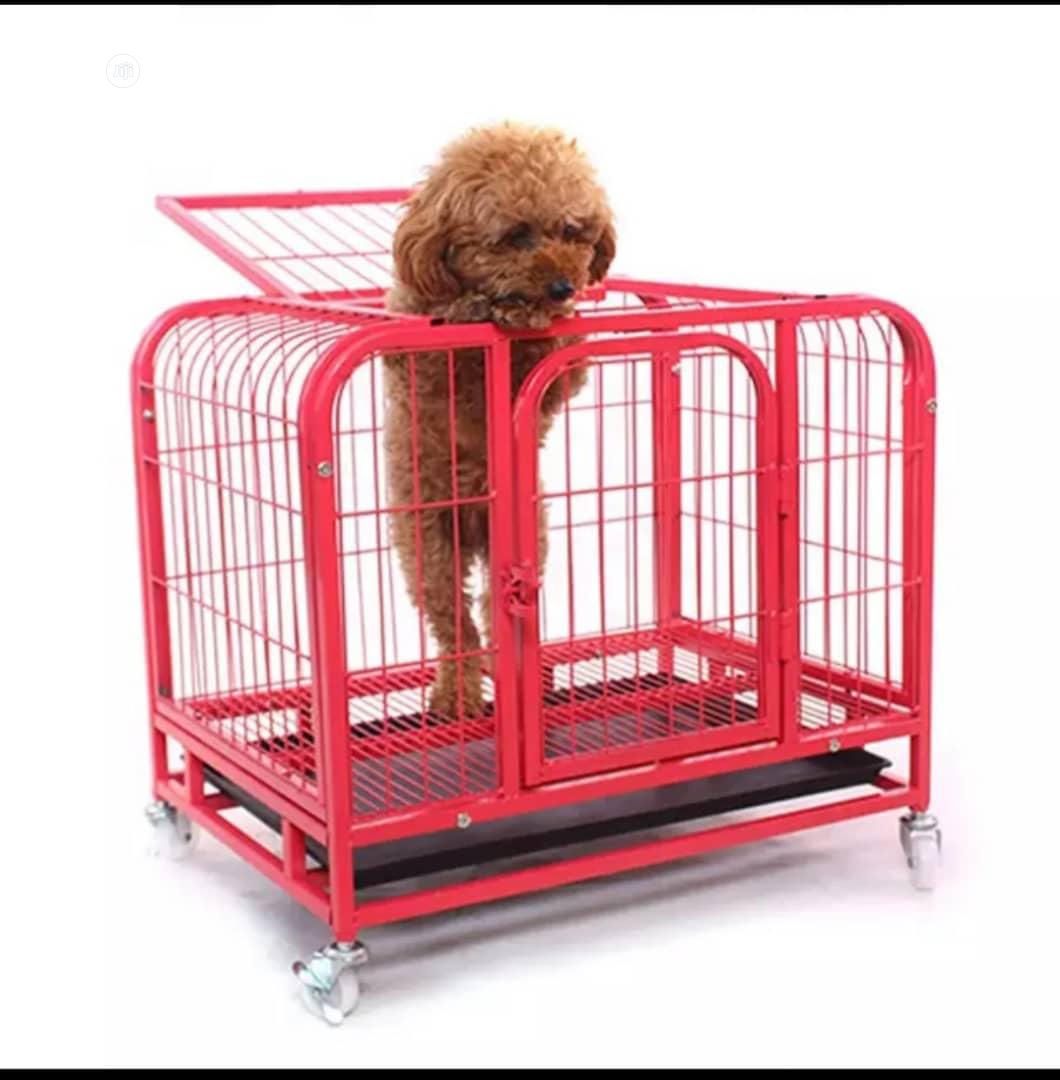 Archive: Dog Cage Now Available In Bigger Sizes