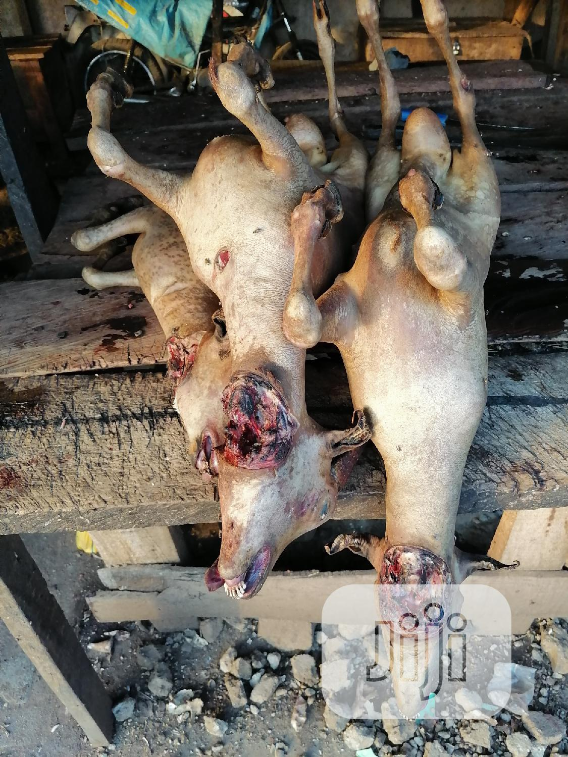 Goat Meat Available | Meals & Drinks for sale in Gwarinpa, Abuja (FCT) State, Nigeria