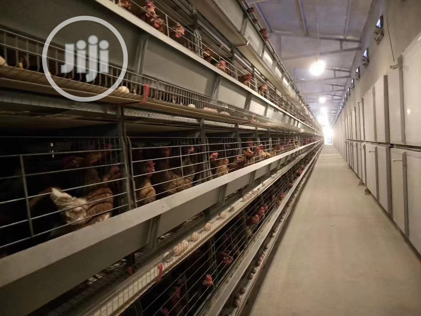 Poultry Cage / China Imported Poultry Cage | Farm Machinery & Equipment for sale in Gamawa, Bauchi State, Nigeria
