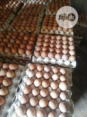 Fresh Eggs   Meals & Drinks for sale in Kano State, Kano Municipal
