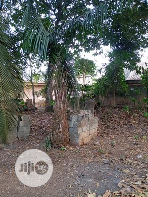 6 Plots of Land for Sale in a Very Strategic Location | Land & Plots For Sale for sale in Abia State, Umuahia