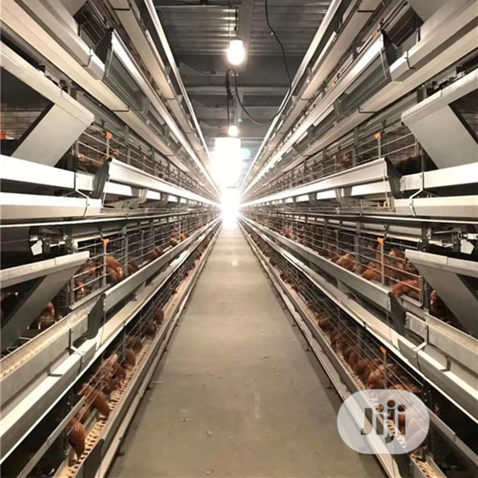 China Poultry Cage H Type Automatic Poultry Cage