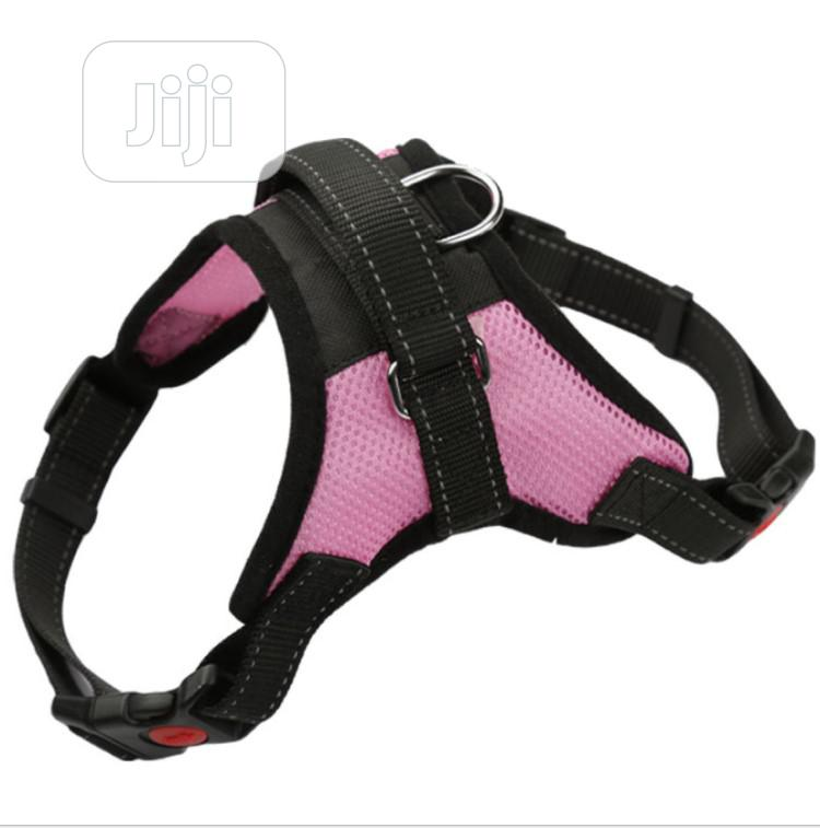 Dog Harness for Big Dogs
