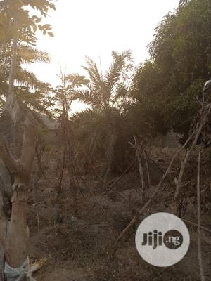 One Acre of Land for Sale | Land & Plots For Sale for sale in Oyo State, Ido