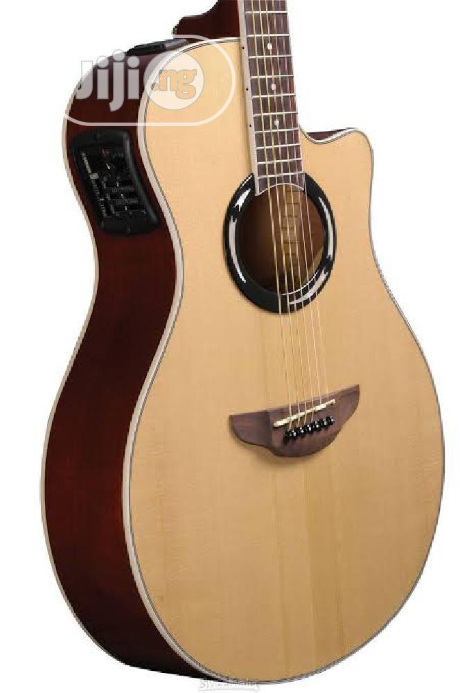 Electric Semi Acoustic Guitar