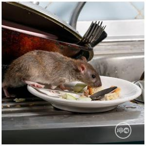 Rats Killer Expert in Your Area | Cleaning Services for sale in Lagos State, Ikeja