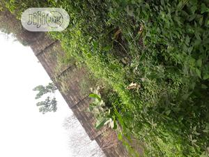 1 Acres of Land   Land & Plots For Sale for sale in Ibadan, Alakia