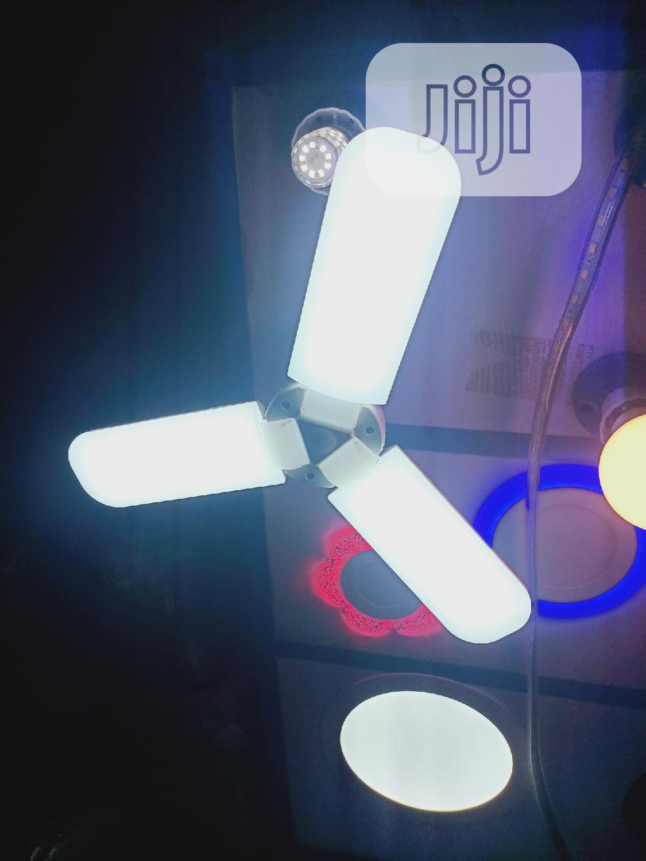Fan Bulbs All Colours