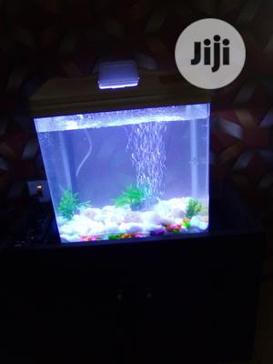 Table Top Stand Aquarium   Fish for sale in Lagos State, Surulere