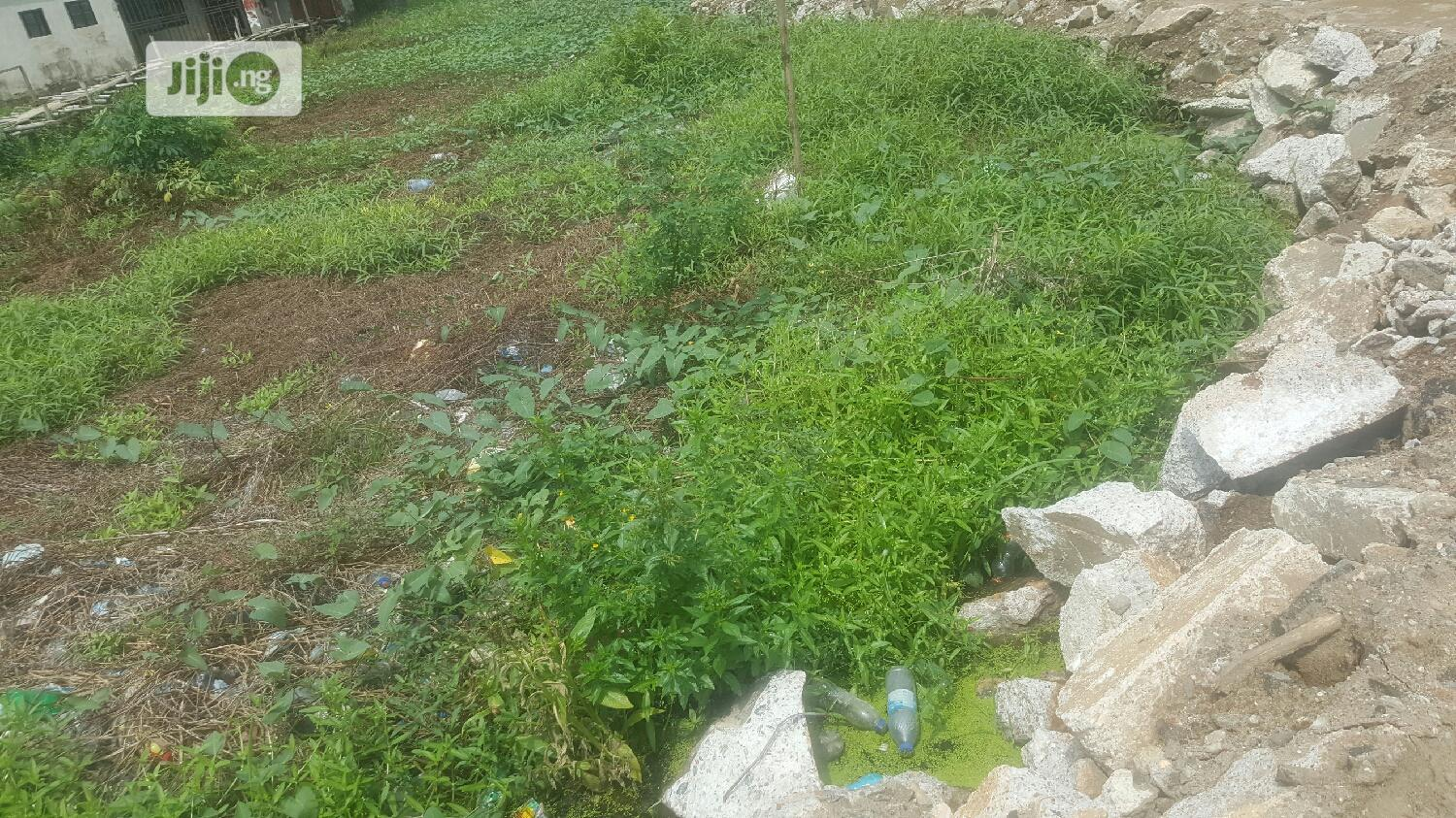Ago Palace Way,Off Idowu Rufai,Half Plot,Registered Survey | Land & Plots For Sale for sale in Isolo, Lagos State, Nigeria