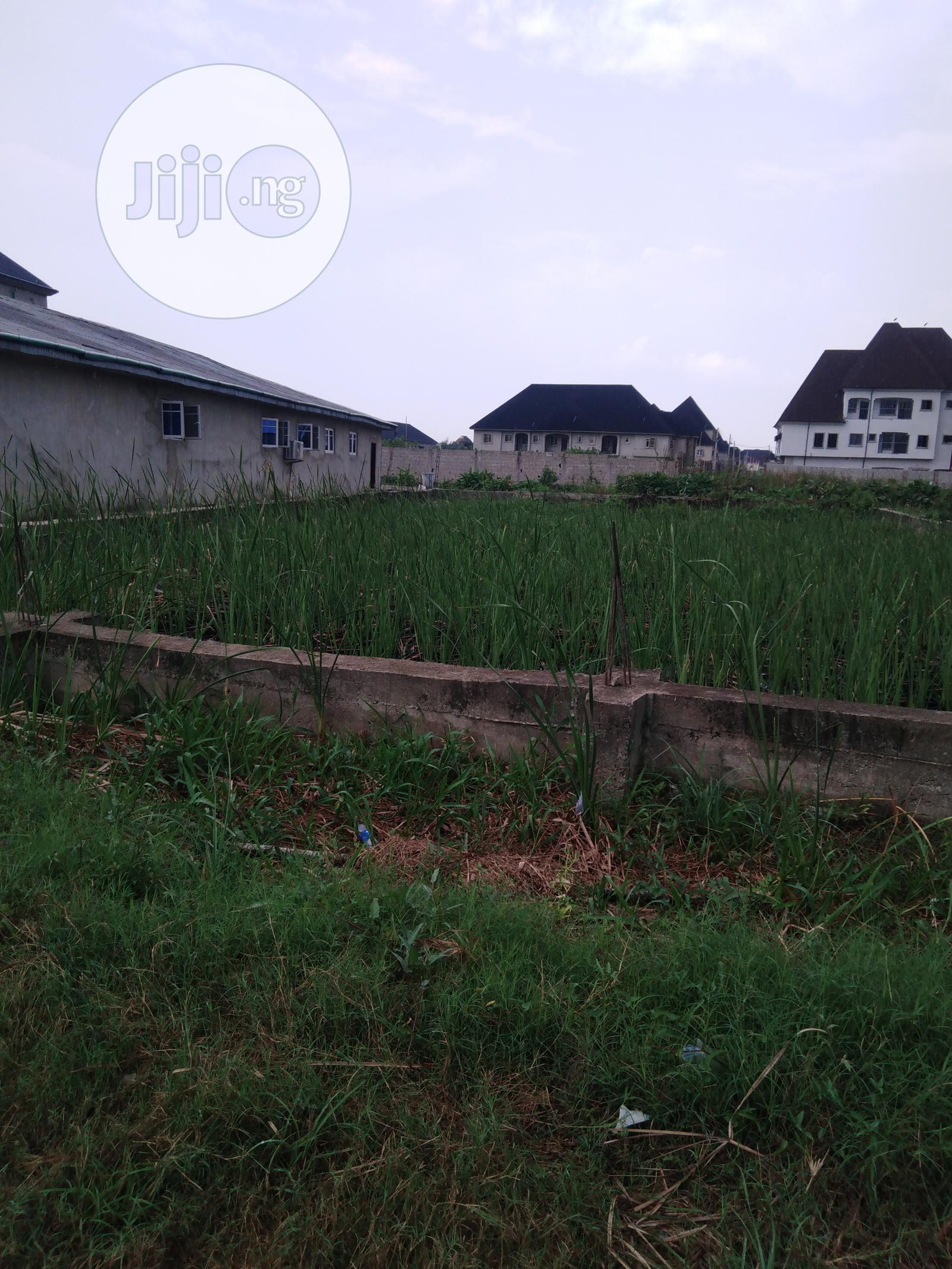 Archive: Residential Plot of Land for Sale in Festac Town