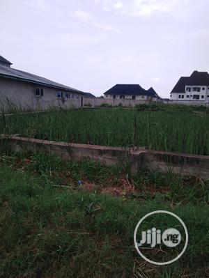 Residential Plot of Land for Sale in Festac Town | Land & Plots For Sale for sale in Amuwo-Odofin, Festac