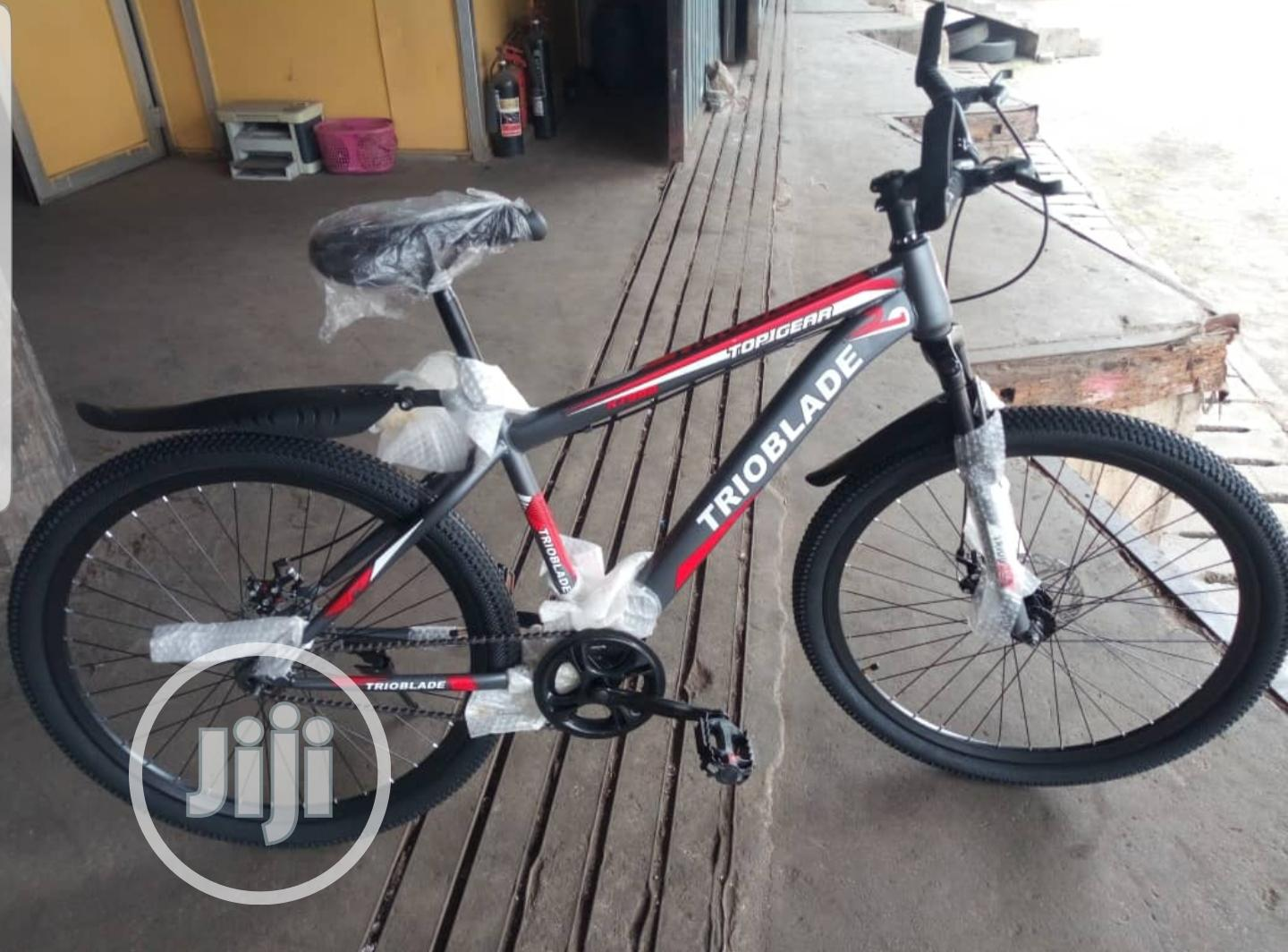 Trioblade Bicycle With Single Speed for the Tall and Big