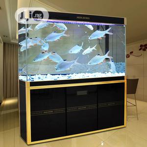 Best Grade Aquariums | Fish for sale in Lagos State, Surulere