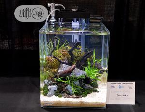 Mini Table Aquarium   Fish for sale in Lagos State, Surulere