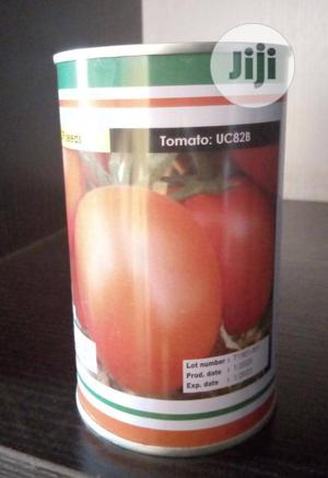 Pepper and Tomato Seeds | Feeds, Supplements & Seeds for sale in Oyo State, Ibadan