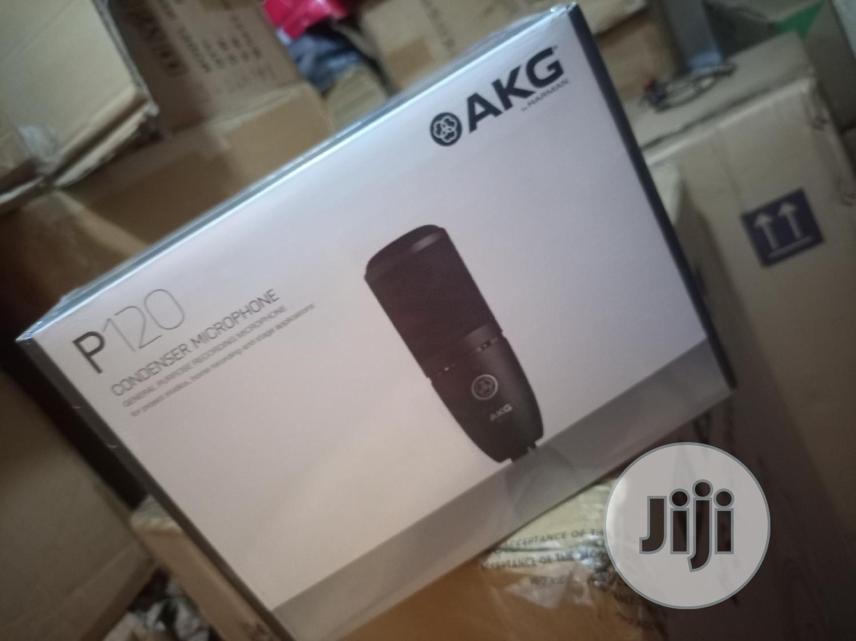Akg Studio Mic P120