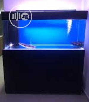 Aquarium and Fishes | Fish for sale in Lagos State, Surulere