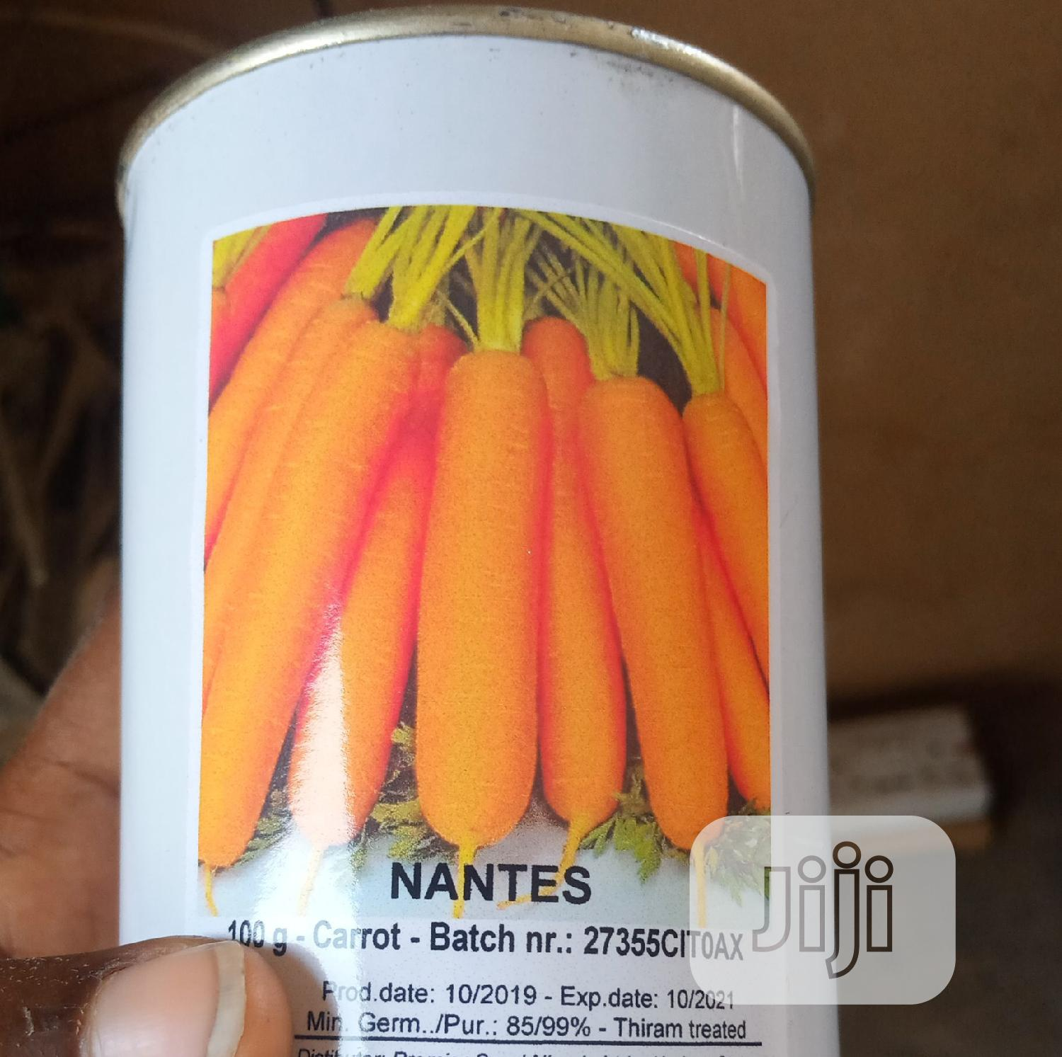 100g and 20g Carrot Seeds