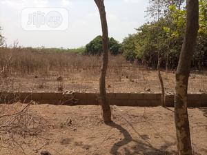 1100sqm Residential Land in Dakibiyu For Sale   Land & Plots For Sale for sale in Abuja (FCT) State, Dakibiyu