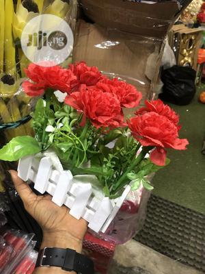 Beautiful Flowers   Garden for sale in Lagos State, Lagos Island (Eko)