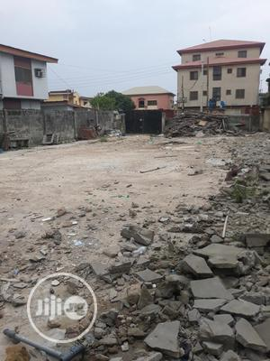 Super Solid Dry Bareland in a Serene Secured Environment   Land & Plots For Sale for sale in Isolo, Ago Palace