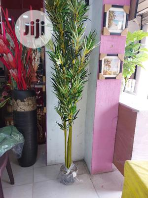Artificial Bamboo Plant   Garden for sale in Lagos State, Ikoyi