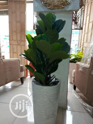 Artificial Fiddle Leaves   Garden for sale in Lagos State, Ikoyi