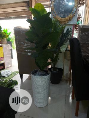 Artificial Plant   Garden for sale in Lagos State, Ikoyi