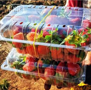 Greenpoint Farm Veggies | Feeds, Supplements & Seeds for sale in Lagos State, Victoria Island