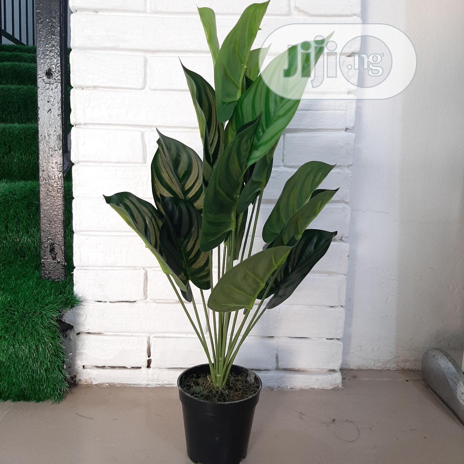 Artificial Monstera Plant From Bethelmendels for Huge Sale
