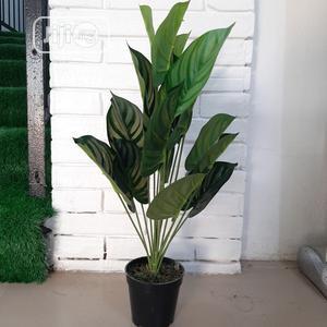 Artificial Monstera Plant From Bethelmendels for Huge Sale   Garden for sale in Lagos State, Ikeja