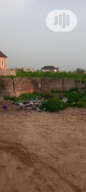 Affordable Land at Abule Ado by Trade Fair | Land & Plots For Sale for sale in Lagos State, Ojo