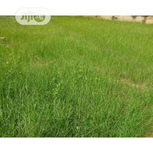 Lands for Sale at Shibiri, Near Alaba Int'l Market, Lagos | Land & Plots For Sale for sale in Lagos State, Ojo