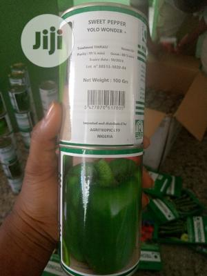 Yolo Wonder + Sweet Pepper   Feeds, Supplements & Seeds for sale in Oyo State, Ibadan