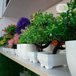 Artificial Plants Bonsai Plants   Garden for sale in Lagos State, Ikeja