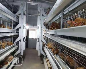 Automatic H Type Poultry Cage China Battery Cage | Farm Machinery & Equipment for sale in Zamfara State, Bukkuyum