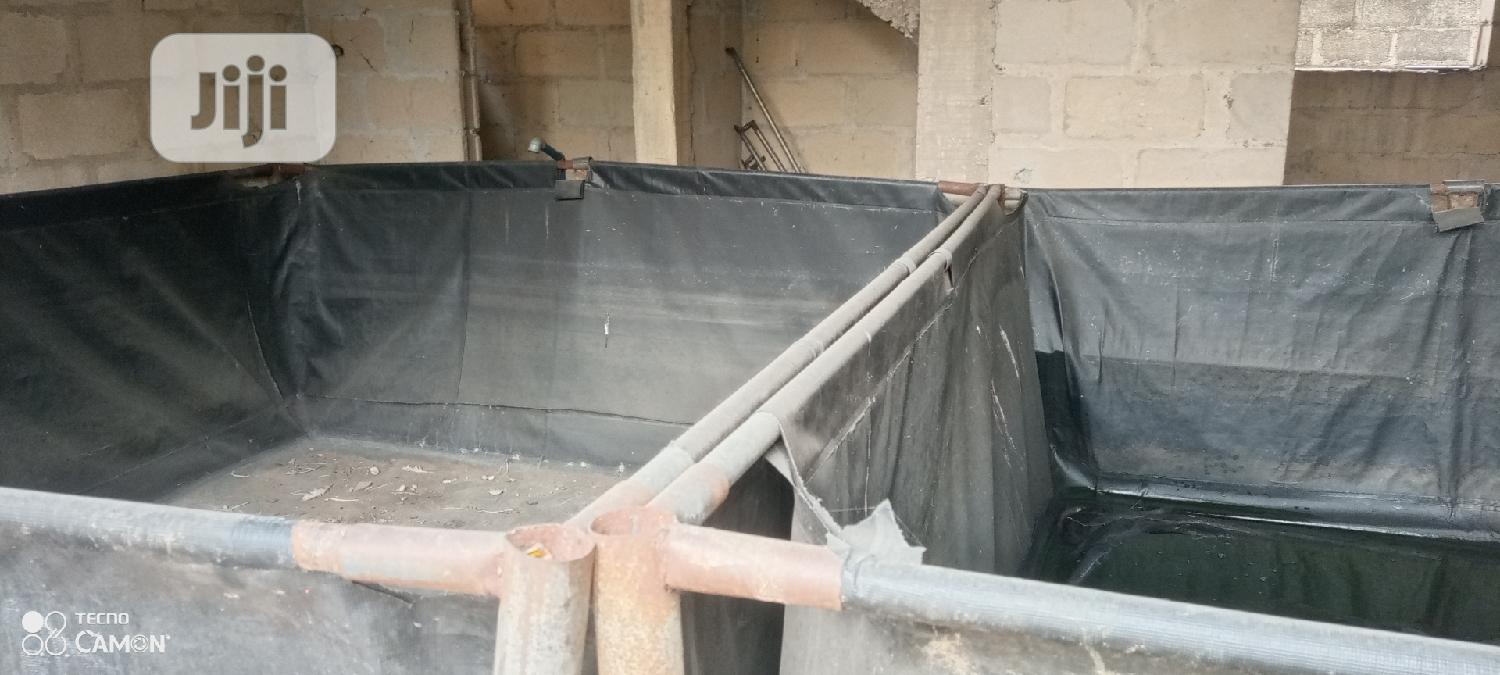 Archive: Fish Pond With Tarpaulin