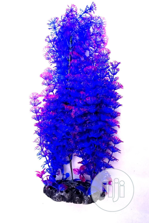 Aquarium Plants Or Aquarium Flowers | Fish for sale in Alimosho, Lagos State, Nigeria